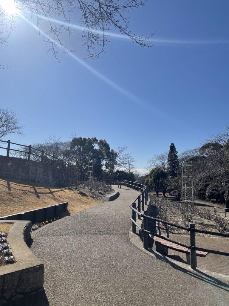 岩本山公園の画像